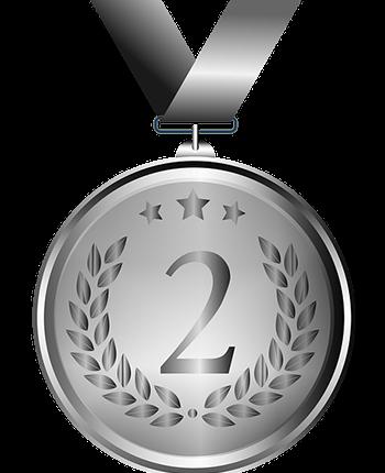 Stříbrná medaile